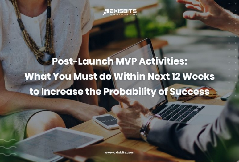 Post-Launch MVP Activities: What You Must do Within Next 12 Weeks to Increase the Probability of Success