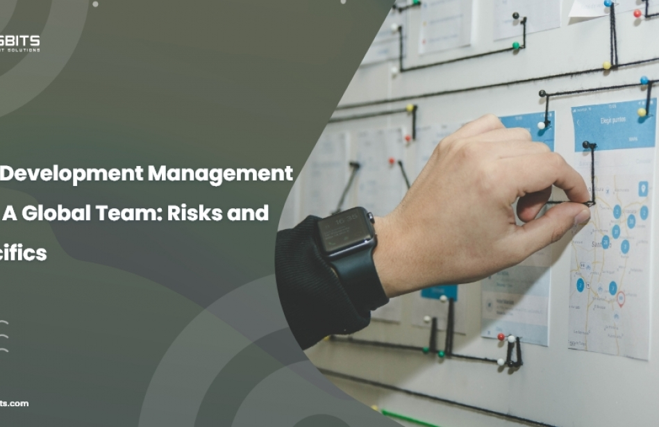 App Development Management with A Global Team: Risks and Specifics