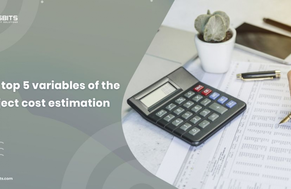 The Top 5 Variables of Project Cost Estimation