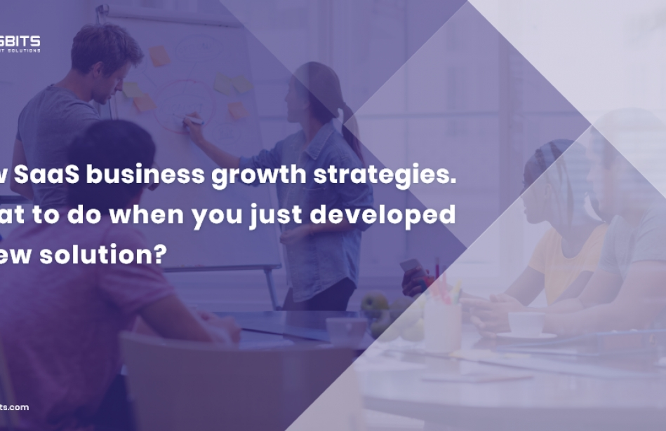 New SaaS business growth strategies. What to do when you just developed a new solution?