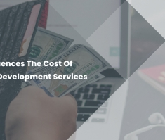 What Influences The Cost Of Software Development Services
